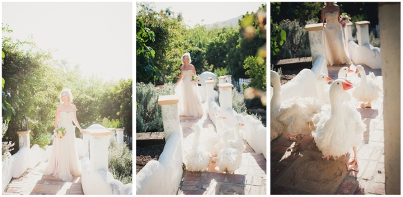 malibu horse ranch wedding 24